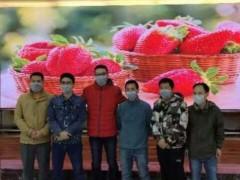 威创36小时建成广东省卫健委疫情防控指挥中心显控系统