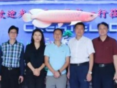 深圳市光明区政协秘书长王毅一行莅临创显光电参观调研